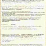 Кварцево-Оливиновый обогреватель Теплея 0,45 квт Серый